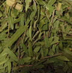 Dried gum leaves